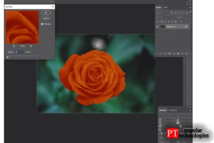 Photoshop Box Blur