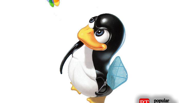 GIF в Linux