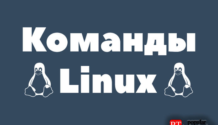 Как использовать команду Linux Chrt
