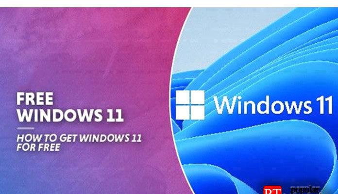 Могу ли я скачать Windows 11 бесплатно