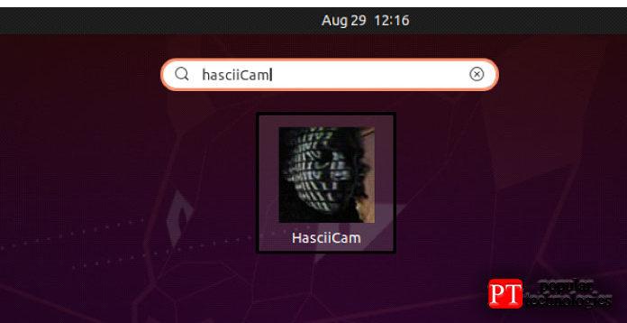 HasciiCam успешно установлен всистеме