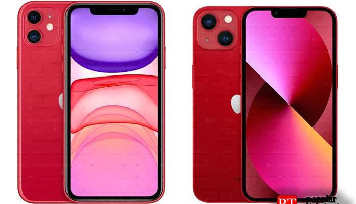 iPhone 11 или iPhone 13